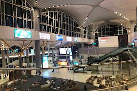 Аэропорт  Istanbul Ataturk IST