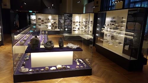 University of Tartu, Museum of Natural History