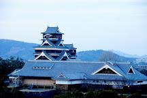 Kumamoto City Hall, Large Hall Floor, Kumamoto, Japan
