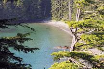 Rathtrevor Beach Provincial Park, Parksville, Canada