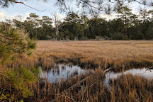 Theodore Roosevelt Natural Area, Pine Knoll Shores, United States
