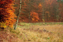 Drawa National Park, Drawno, Poland
