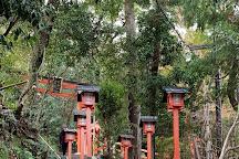 Monkey Park Iwatayama, Kyoto, Japan