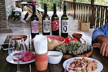 Cradle of Wine Marani Winery, Signagi, Georgia