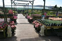 Sunnydale Garden Centre, Cwmbran, United Kingdom
