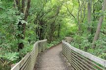 Furstenberg Nature Area, Ann Arbor, United States