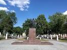 Центральный парк на фото Ветки
