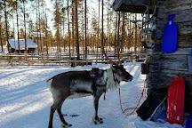 Levin Lapinkyla, Levi, Finland