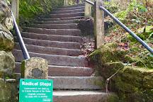 Radical Steps, Kirkby Lonsdale, United Kingdom