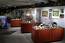 Fick Fossil & History Museum, Oakley, United States