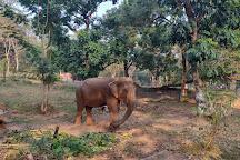 Assam State Zoo and Botanical Garden, Guwahati, India