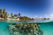 Dive Spirit Fakarava, Fakarava, French Polynesia