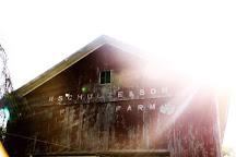 Schulze Vineyards & Winery, Burt, United States