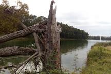Lac de Gurson, Villefranche-de-Lonchat, France