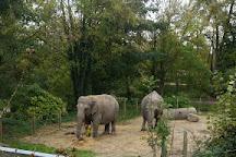 Zoo d'Amiens, Amiens, France