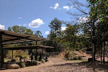 Howard Springs Nature Park, Darwin, Australia