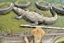 Colorado Gators Reptile Park, Mosca, United States