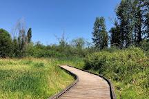 Mercer Slough Nature Park, Bellevue, United States