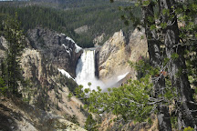 Yellowstone Day Tours, Jackson, United States