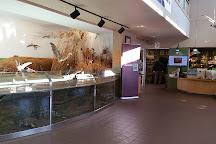Oak Hammock Marsh Interpretive Centre, Stony Mountain, Canada