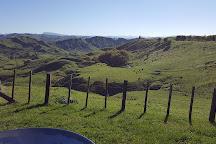 Eastwoodhill Arboretum, Ngatapa, New Zealand