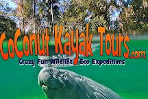 Coconut Kayak Tours, Clearwater, United States