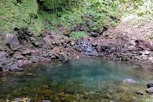 Salton Waterfalls, Saint Joseph, Dominica