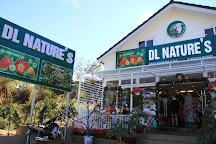 DL Nature's, Da Lat, Vietnam