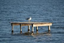 Lago di Fogliano, Latina, Italy