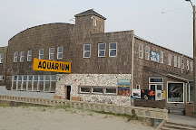 Seaside Aquarium, Seaside, United States