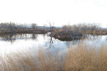 Arapahoe Bend Natural Area, Fort Collins, United States