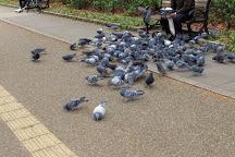 Utsubo Park, Osaka, Japan
