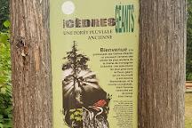 Giant Cedars Boardwalk Trail, Revelstoke, Canada