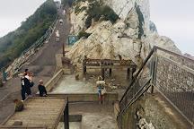 Upper Rock Nature Reserve, Gibraltar