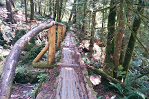 Lynn Headwaters Regional Park, North Vancouver, Canada