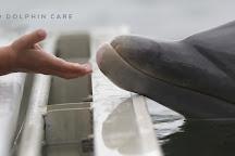 Island Dolphin Care, Key Largo, United States