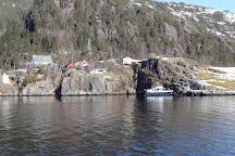 Roedne Fjord Cruise, Bergen, Norway