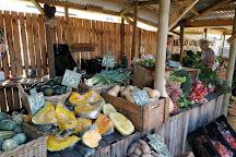Hermanus Country Market, Hermanus, South Africa