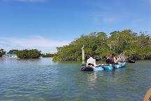 Kayak Adventures Key West, Key West, United States