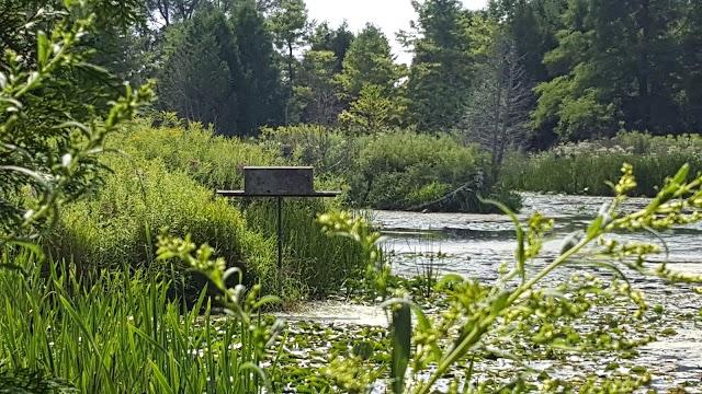 Nawautin Nature Sanctuary