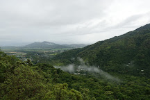 Rainforestation Nature Park, Kuranda, Australia