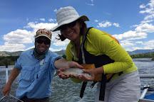 Jackson Hole Fly Fishing School, Jackson, United States