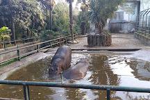 Giardino Zoologico di Pistoia, Pistoia, Italy
