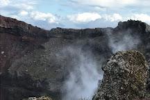Vesuvio National Park, Ottaviano, Italy