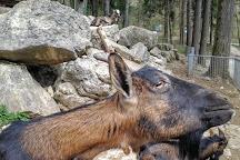 Parc zoologique Bienne, Biel, Switzerland