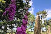 Sunhoney Stone Circle, Echt, United Kingdom