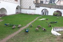 Pardubice Castle, Pardubice, Czech Republic