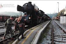 Treno storico Transalpina, Bled, Slovenia