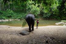 Elephant Care Relief Foundation, Kegalle, Sri Lanka