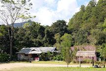 Doi Inthanon National Park, Doi Inthanon National Park, Thailand